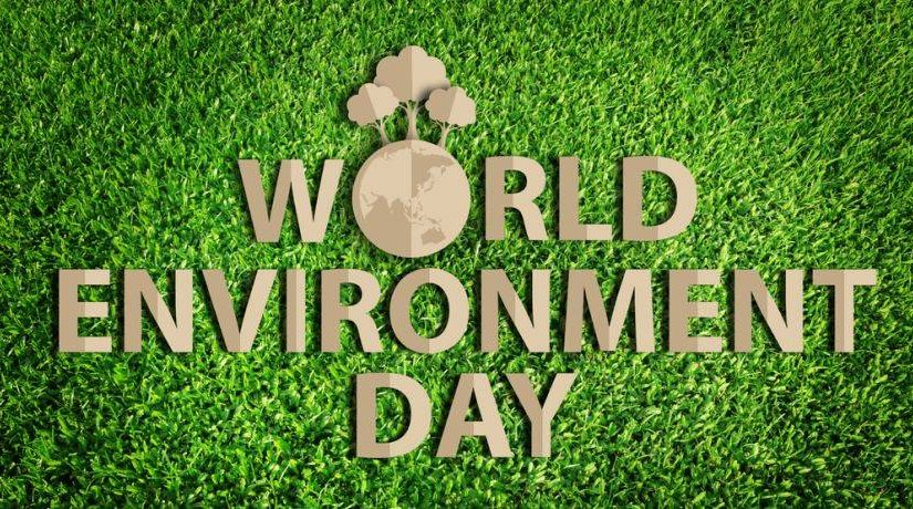 Interesting Facts about the World Environment Day
